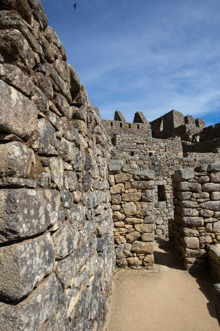Machu Picchu_262