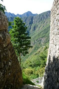 Machu Picchu_269