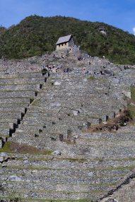Machu Picchu_277