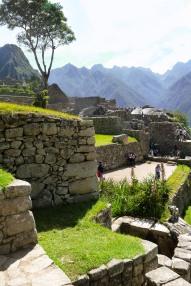 Machu Picchu_288