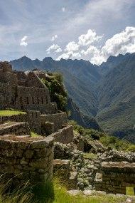 Machu Picchu_295