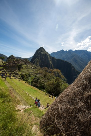 Machu Picchu_301