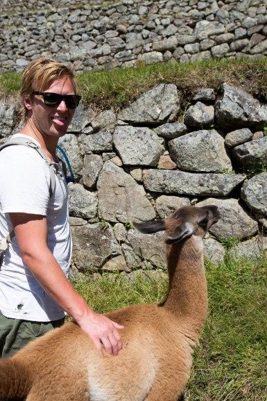 Machu Picchu_302