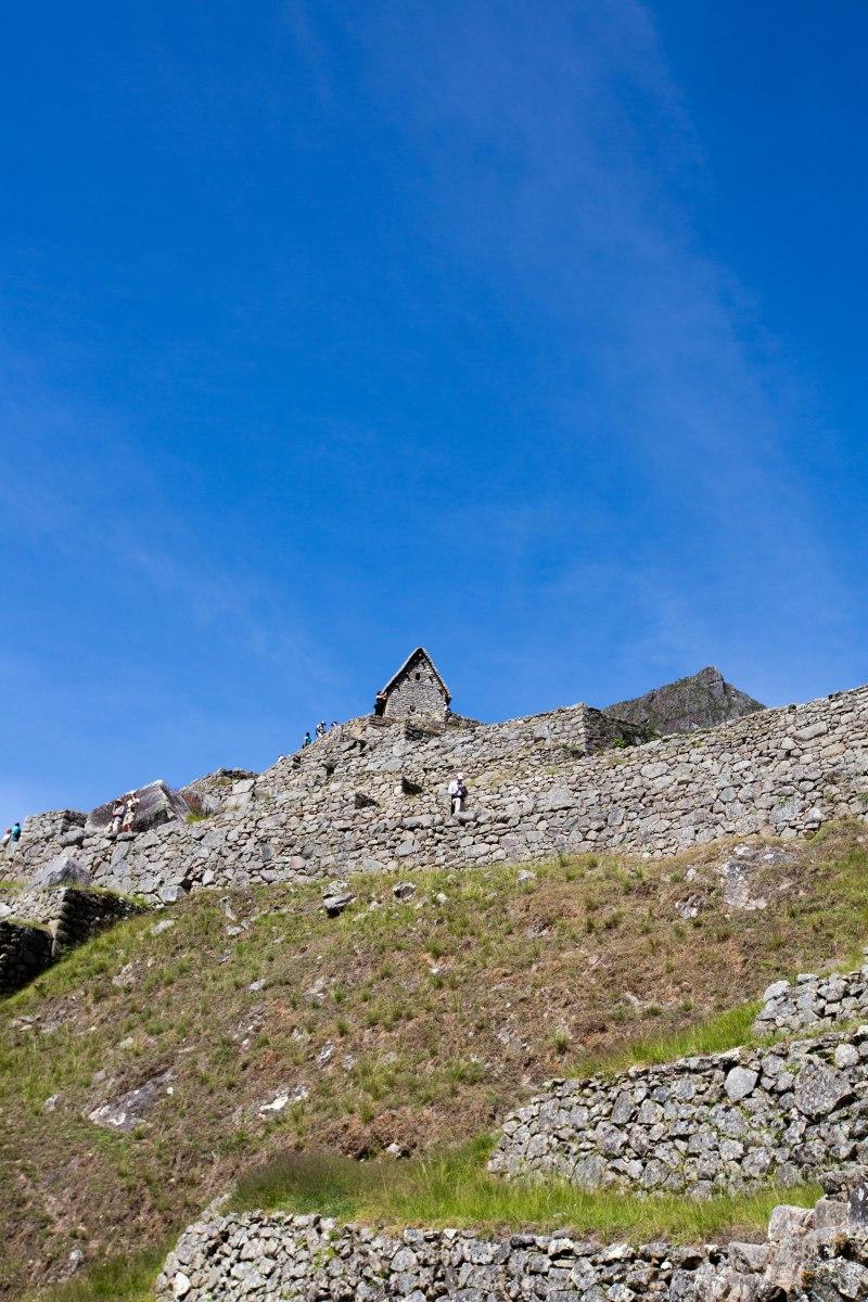 Machu Picchu_303