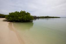 Galapagos_036