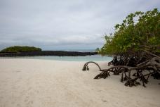 Galapagos_039
