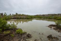Galapagos_044