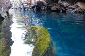 Galapagos_050