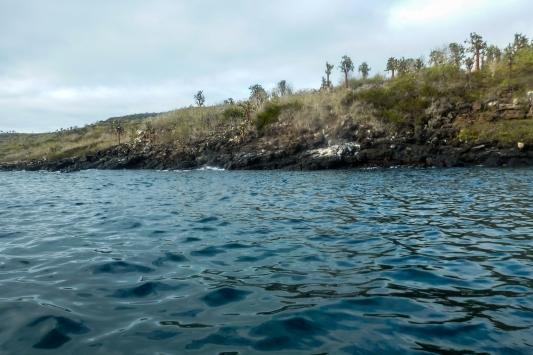 Galapagos_063