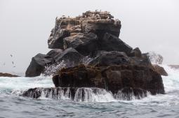 Galapagos_102