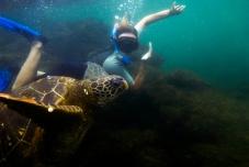 Galapagos_135