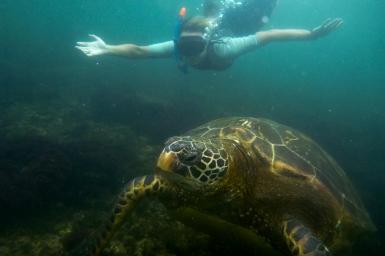 Galapagos_141