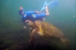 Galapagos_145