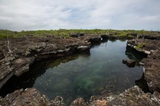 Galapagos_172