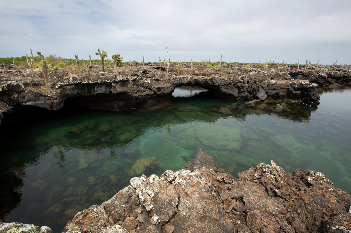 Galapagos_181