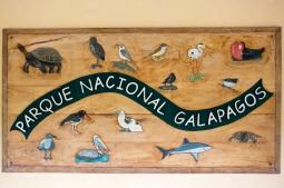 Galapagos_185