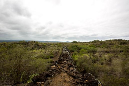 Galapagos_222