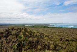 Galapagos_224