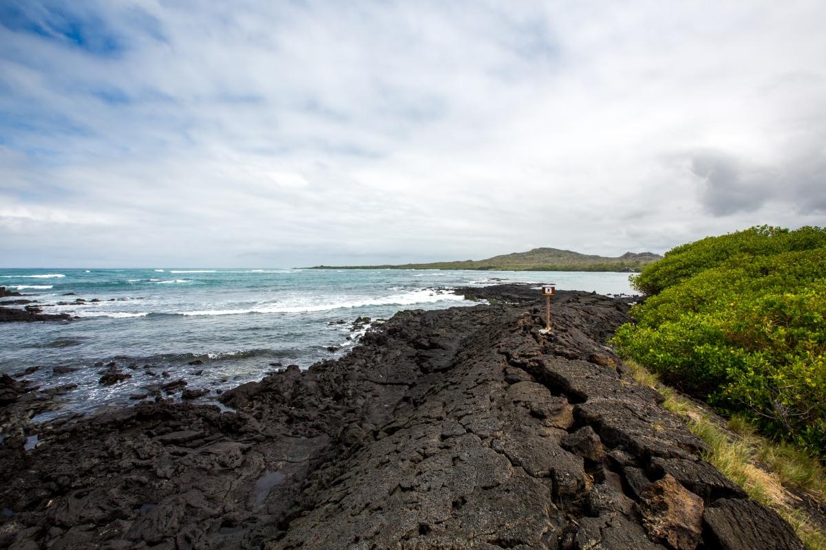 Galapagos_240