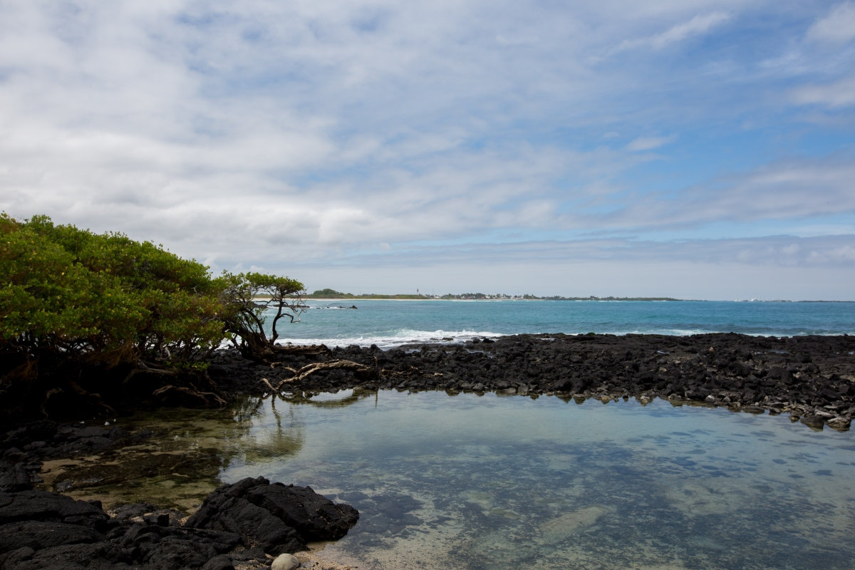 Galapagos_241
