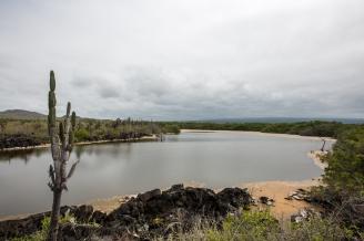Galapagos_242