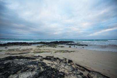 Galapagos_256