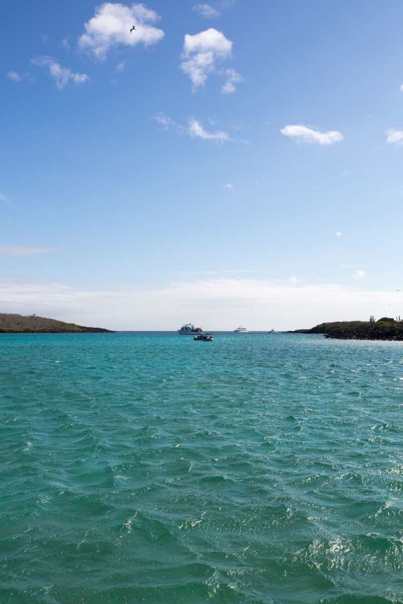 Galapagos_316