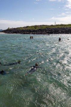 Galapagos_318