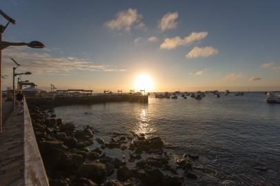 Galapagos_330
