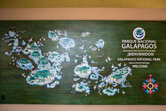 Galapagos_339