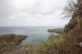 Galapagos_342