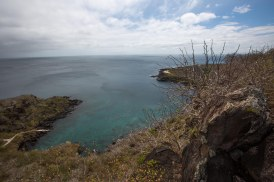 Galapagos_343