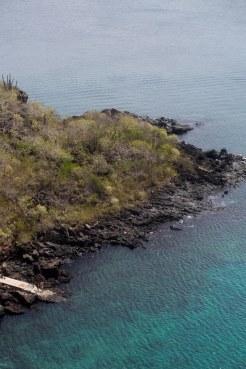 Galapagos_344