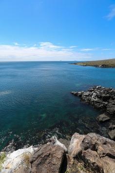 Galapagos_364