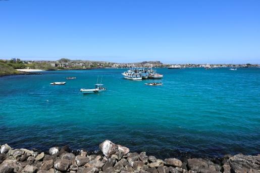 Galapagos_369