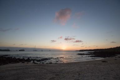 Galapagos_403