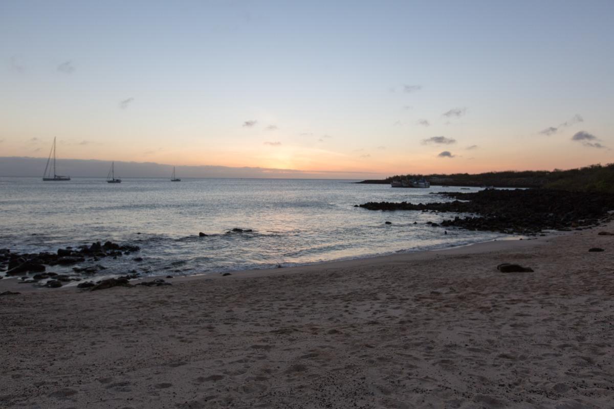 Galapagos_405